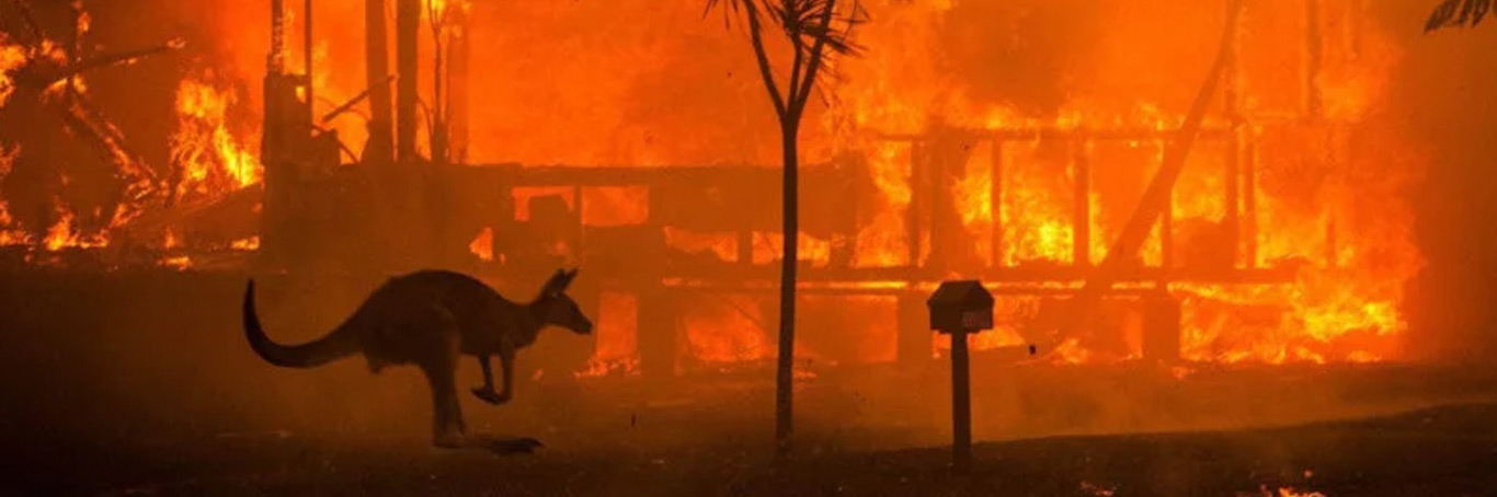 Australian Fires News